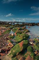 East Beach, Dunbar, East Lothian