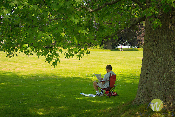 Harkness Memorial State Park. Man under tree reading.