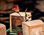 Floating Lanterns memorialize those that have passed away. This poignant image of a photo and a rose speaks to the hundreds of memories that are attached to each lantern.
