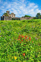 "Another angle of the presidio with some wildflowers growing in front with indian paintbrush, savia and many other wildflowers.  Another in a series of images of this historic site is capture of Presidio La Bahí in Goliad on a spring day with wild savia growing in front along with some other wildflowers.The history of the Presidio Nuestra Señora de Loreto de la Bahía, known more commonly as Presidio La Bahia, is a fort constructed by the Spanish Army that became the nucleus of the modern-day city of Goliad, Texas, United States. Originally founded in 1721 on the ruins of the failed French Fort Saint Louis, the presidio was moved to a location on the Guadalupe River in 1726. In 1747, the presidio and its mission were moved to their current location on the San Antonio River. By 1771, the presidio had been rebuilt in stone and had become ""the only Spanish fortress for the entire Gulf Coast from the mouth of the Rio Grande to the Mississippi River"".[3] The civilian settlement, later named Goliad, sprang up around the presidio in the late 18th century; the area was one of the three most important in Spanish Texas."