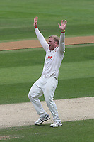 Simon Harmer of Essex claims the wicket of Matthew Fisher during Essex CCC vs Yorkshire CCC, Specsavers County Championship Division 1 Cricket at The Cloudfm County Ground on 9th July 2019