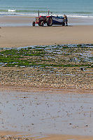 France, Pas-de-Calais (62), Côte d'Opale, Audresselles: Tracteur  de pêcheur qui tire un flobarts, bateau  de pêche traditionnel  sur  la plage //  France, Pas de Calais, Cote d'Opale (Opal Coast), Audresselles:Tractors fishermen who pull the flobarts, traditional fishing boats on the beach