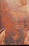Bighorn Sheep, Eye of the Sun Anasazi Petroglyphs, Monument Valley Navajo Tribal Park, Navajo Nation Reservation, Utah/Arizona Border