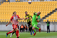 Melbourne City&rsquo;s Eugene Galekovic in action during the A League - Wellington Phoenix v Melbourne City FC at Westpac Stadium, Wellington, New Zealand on Saturday 26 January 2019. <br /> Photo by Masanori Udagawa. <br /> www.photowellington.photoshelter.com