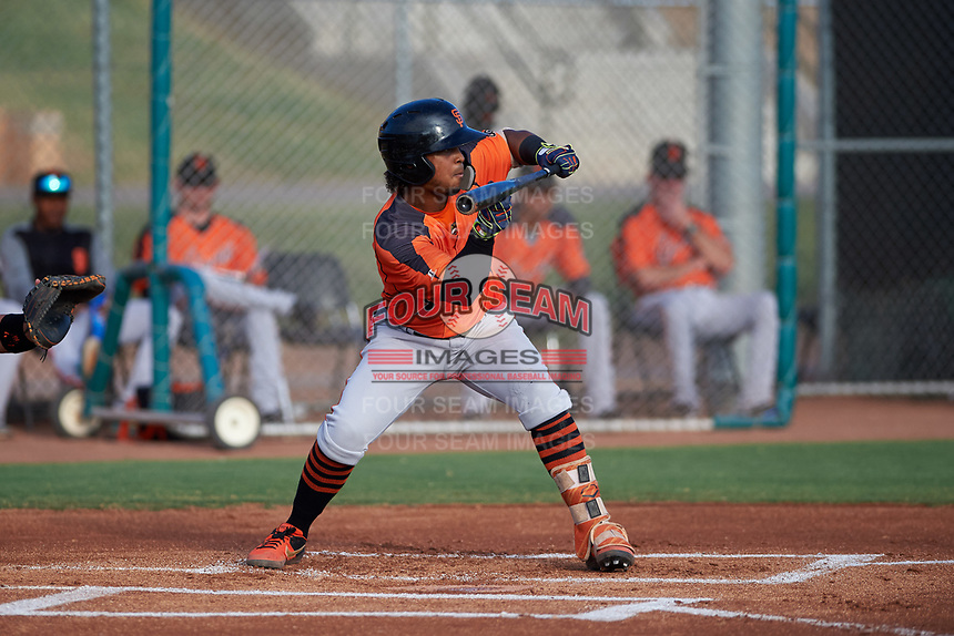 AZL Giants Orange Andrew Caraballo (1) squares to bunt during an Arizona League game against the AZL Giants Black on July 19, 2019 at the Giants Baseball Complex in Scottsdale, Arizona. The AZL Giants Black defeated the AZL Giants Orange 8-5. (Zachary Lucy/Four Seam Images)