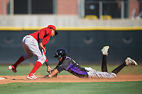 Los Angeles Angels of Anaheim Gleyvin Pineda (23) tags out Pedro Gonzalez (53) during an Instructional League game against the Colorado Rockies on October 6, 2016 at the Tempe Diablo Stadium Complex in Tempe, Arizona.  (Mike Janes/Four Seam Images)