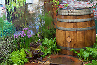 Rainwater Collection Rain Barrels Stock Photos