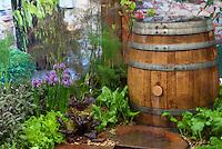 Rainwater Collection Rain Barrels Stock Photos