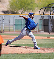 Adbert Alzolay - Chicago Cubs 2019 extended spring training (Bill Mitchell)