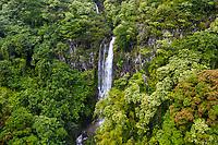 A waterfall along the road to Hana, Maui.