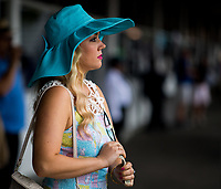 BALTIMORE, MD - MAY 20: A woman watches an undercard race from the grandstands on Preakness Stakes Day at Pimlico Race Course on May 20, 2017 in Baltimore, Maryland.(Photo by Scott Serio/Eclipse Sportswire/Getty Images)