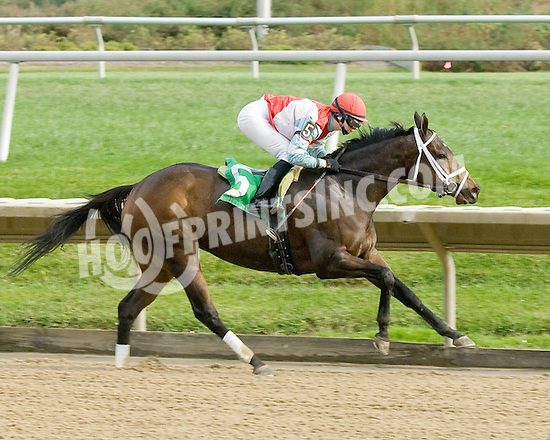 There I Go winning at Delaware Park on 10/20/09