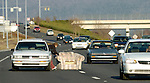Motorist stops on I-565 in rush hour traffic to move chair that had fallen off a pick-up truck onto the interstate creating a traffic hazard.  Other items that have recently fallen off vehicles into the path of traffic include a refridgerator, dinning room table, big screen TV and couches.  Bob Gathany photo.