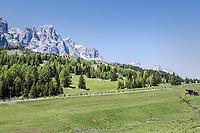 peloton snaking down the Passo Monte Croce Comelico / Kreuzbergpass (1636m)<br /> <br /> Stage 19: San Candido/Innichen &rsaquo; Piancavallo (191km)<br /> 100th Giro d'Italia 2017