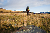 Single hiker hiking north through empty landscape in autumn on Kungsleden trail, Lapland, Sweden