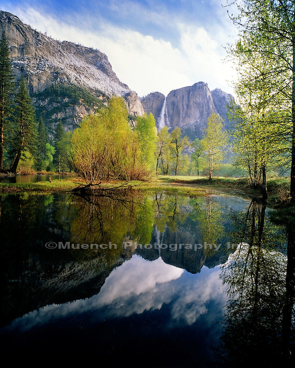 """Merced River, Yosemite Falls, Yosemite National Park"