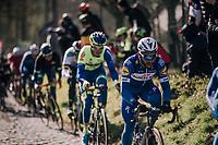 Fernando Gaviria (COL/Quick-Step Floors) up the Molenberg (cobbles)<br /> <br /> Omloop Het Nieuwsblad 2018<br /> Gent › Meerbeke: 196km (BELGIUM)