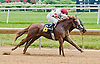 Strong Enough winning at Delaware Park on 7/22/13