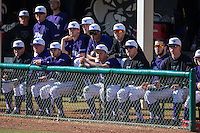 The High Point Panthers bench looks on from the dugout during the game against the UNCG Spartans at Willard Stadium on February 14, 2015 in High Point, North Carolina.  The Panthers defeated the Spartans 12-2.  (Brian Westerholt/Four Seam Images)