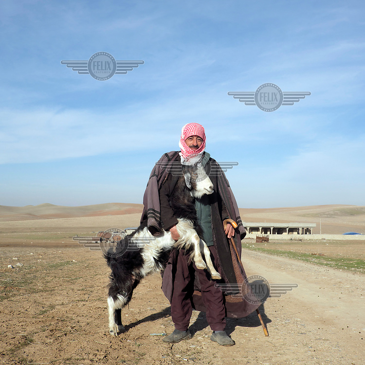Sabah, a shepherd who grazes 500 sheep and a few goats near the town of Berdia.