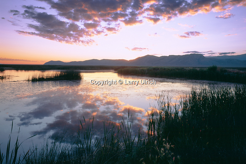 Maverick Springs Range<br />