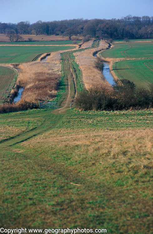 A913GC The Thrift, an ancient causeway across marshland to Burrow Hill, Butlet marshes, Suffolk, England