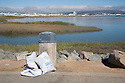 "Some of the trash that was collected at Bayfront Park. Volunteers in the City of Millbrae participated in California Coastal Cleanup Day on 9/19/09. Participants cleaned up inland locations throughout the city as well as at Bayfront Park on the San Francisco Bay shoreline. The inland cleanup efforts were important because, according to the California Coastal Commission, ""past Coastal Cleanup Day data tell us that most (between 60-80 percent) of the debris on our beaches and shorelines comes from inland sources, traveling through storm drains or creeks out to the beaches and ocean. Rain or even something as simple as hosing down a sidewalk can wash cigarette butts, bits of styrofoam, pesticides, and oil into the storm drains and out to the ocean."" The California Coastal Cleanup Day (http://www.coastal.ca.gov/publiced/ccd/ccd.html) is sponsored by the California Coastal Commission and is a part of the International Coastal Cleanup organized by The Ocean Conservancy."