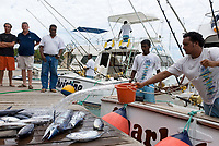 MUS, Mauritius, Grand Baie: Ausbeute einer Angeltour, zurueck vom Hochseefischen | MUS, Mauritius, Grand Baie: game-fishing, catch of the day