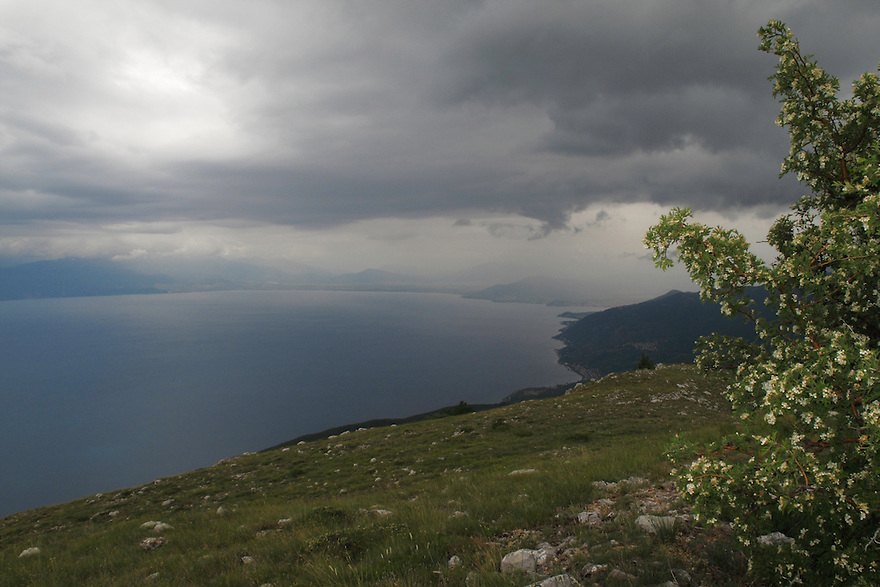 View from Mount Baba (1635 m) in Galicica National Park, Macedonia, with northern shore of Lake Ohrid (693m) in background. June 2009<br /> Mission: Macedonia, Lake Macro Prespa /  Lake Ohrid, Transnational Park<br /> David Maitland / Wild Wonders of Europe