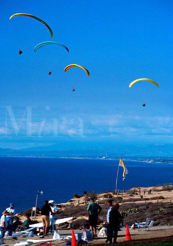 Paragliders soar above Black's Beach and the Pacific Ocean near the University of California at San Diego gliderport. La Jolla, California.