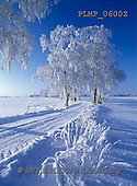 Marek, CHRISTMAS LANDSCAPES, WEIHNACHTEN WINTERLANDSCHAFTEN, NAVIDAD PAISAJES DE INVIERNO, photos+++++,PLMP0600Z,#xl#