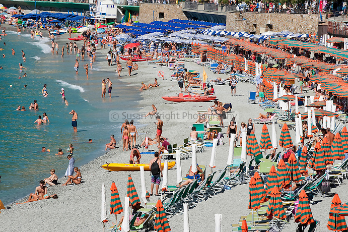 Umbrella lined beach at Monterosso, on the Cinque Terre, Liguria, Italy