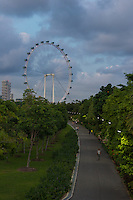 Singapore Flyer Ferris Wheel In The Evening, Singapore