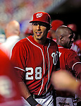 22 August 2009: Washington Nationals' infielder Mike Morse stands in the dugout during a game against the Milwaukee Brewers at Nationals Park in Washington, DC. The Nationals fell to the Brewers 11-9 in the second game of their four-game series. Mandatory Credit: Ed Wolfstein Photo