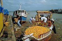 Oranges for selling at local market