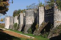 Europe/France/Ile-de-France/77/Seine-et-Marne/Provins: les remparts