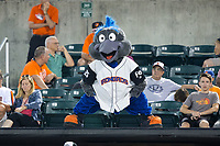 Aberdeen IronBirds mascot Ferrous entertains the fans during the New York Penn League game against the Hudson Valley Renegades at Leidos Field at Ripken Stadium on July 27, 2017 in Aberdeen, Maryland.  The IronBirds defeated the Renegades 3-0 in game two of a double-header.  (Brian Westerholt/Four Seam Images)
