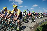 Robert Wagner (DEU/LottoNL-Jumbo) &amp; Sep Vanmarcke (BEL/LottoNL-Jumbo)<br /> <br /> 99th Ronde van Vlaanderen 2015