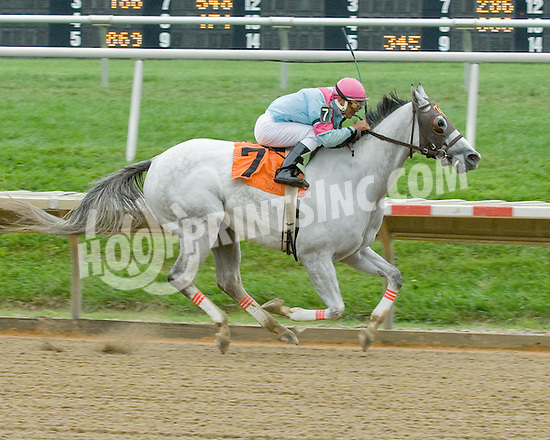 Man in Grey winning at Delaware Park on 9/8/09