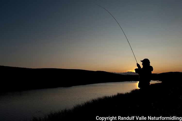 Fluefisker med fast fisk i solnedgang. ---- Flyfisher fighting fish at sunset.