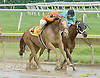 Lady Winaway winning at Delaware Park on 6/28/11