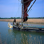 Traditional sailing barge Cygnet amongst the reed beds on the River Alde at Snape, Suffolk, England