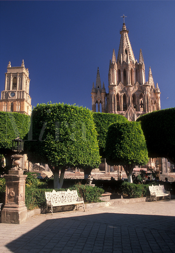AJ1909, Mexico, San Miguel de Allende, Indian laurel trees shade the Central Plaza in San Miguel de Allende in the state of Guanajuato. Parich Church (La Parroquia) is seen in the background.