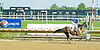 Elegant Dancer MHF winning at Delaware Park on 6/120/12