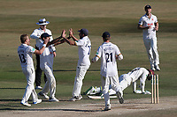 Essex players celebrate the run out of Eddie Byrom during Essex CCC vs Somerset CCC, Specsavers County Championship Division 1 Cricket at The Cloudfm County Ground on 28th June 2018