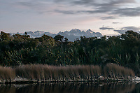 Southern Alps with Mt. Cook (right 3724m) and Mt. Tasman (left 3497m) viewed from Five Mile Lagoon after sunset, Westland Tai Poutini National Park, West Coast, UNESCO World Heritage Area, New Zealand, NZ
