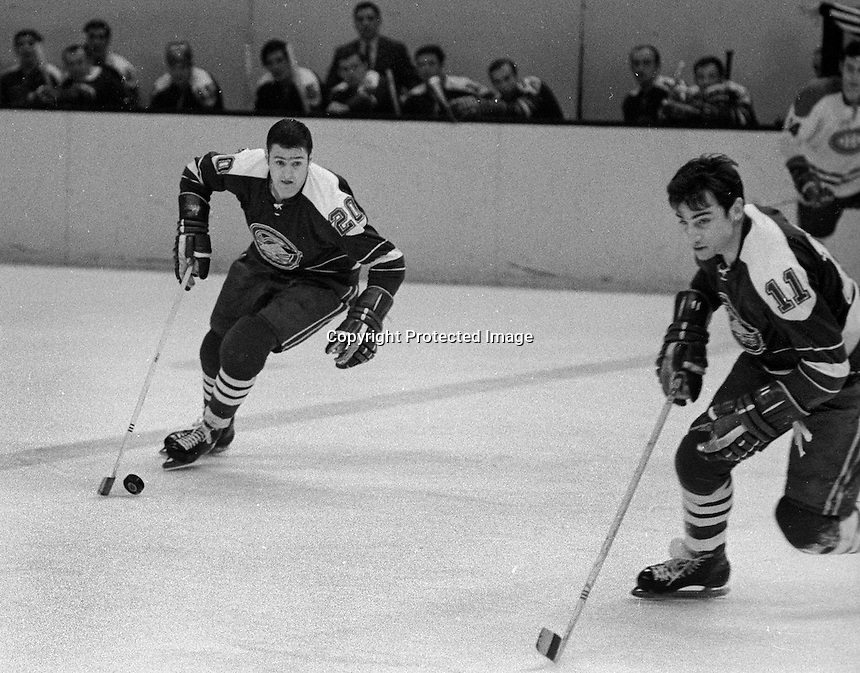 Seals #20 Ernie Hicke, and #11 Don O'Donoghue scating (1970 photo/Ron Riesterer)