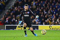 Mathew Ryan of Brighton & Hove Albion during Brighton & Hove Albion vs Norwich City, Premier League Football at the American Express Community Stadium on 2nd November 2019