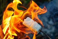 Roasting marshmallows over a summer campfire.