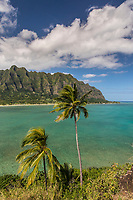 Kualoa Regional Park, with Chinaman's Hat (or Mokoli'i) Island in the foreground, Windward O'ahu.